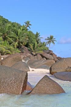 Das letzte Jahr und die Flucht auf die Seychellen