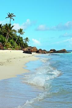 Reif für die Insel Silhouette