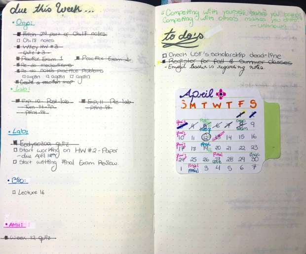 Best Bullet Journal layouts9