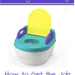Potty Training 101! How to Get The Job Done Quickly!