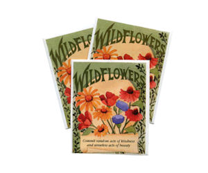 wildflower-seeds