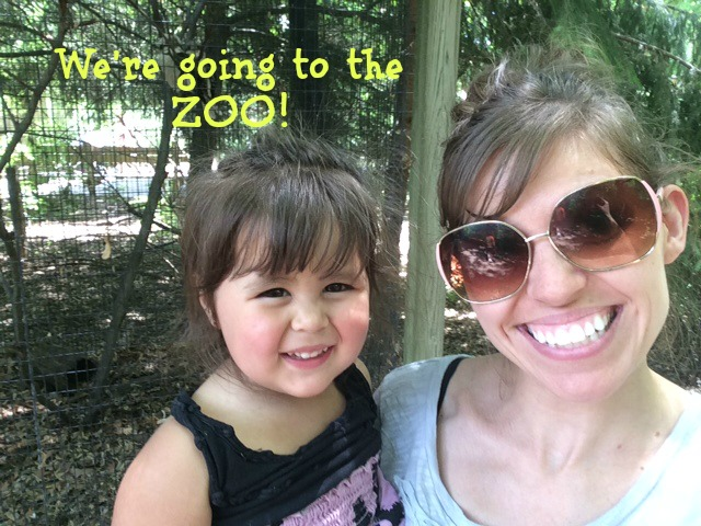 Going-to-the-zoo