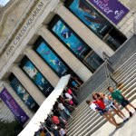 How-to Enjoy Chicago's Shedd Aquarium in 5 Easy Steps!