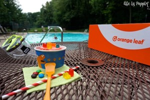 Orange Leaf Pop-Up Party Box – Parties Just got a Little Better
