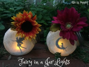 Fairy in a Jar Night Lights