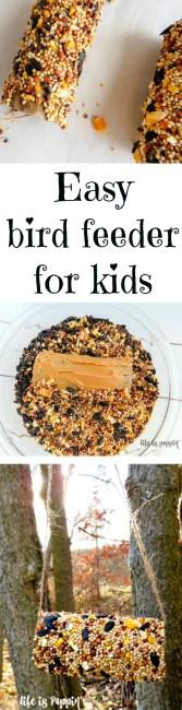 Easy bird feeder for kids pin