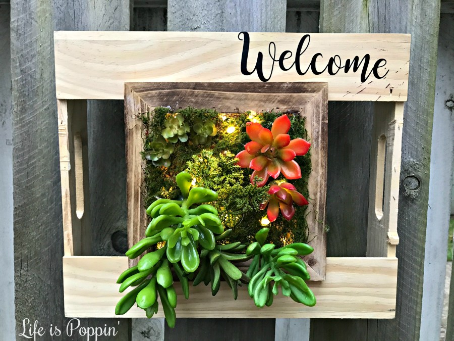 Succulent-address-planter