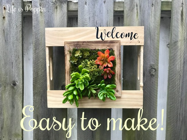 easy-succulent-planter