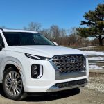 2020 Hyundai Palisade Family Review: Nailed It!