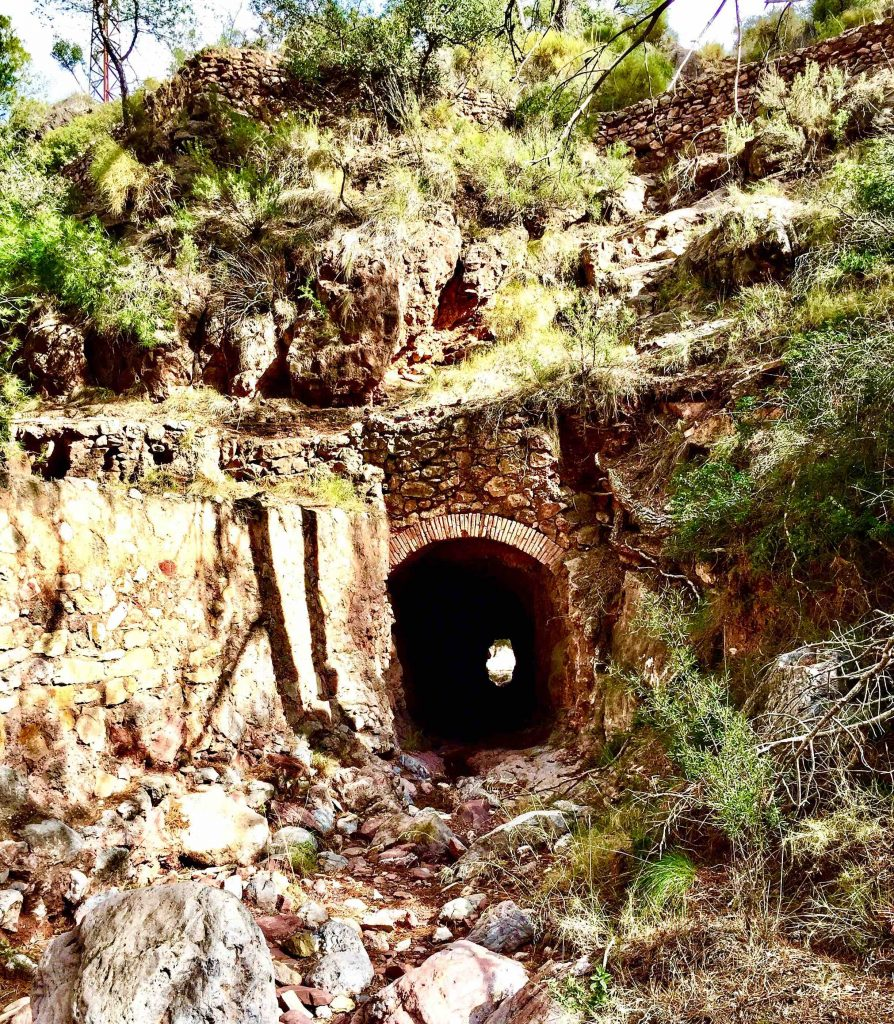 a tunnel with rocks and green bushes around it