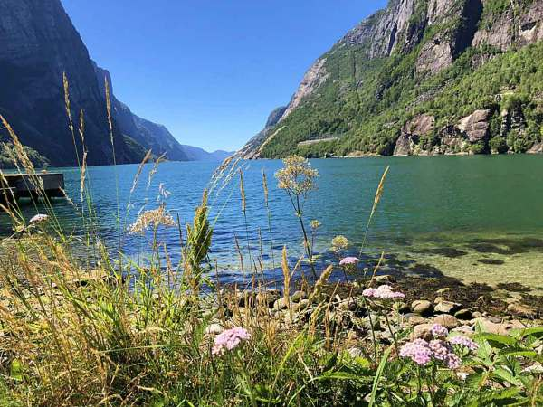View of the green waters of a Norwegian fjord see from the shore