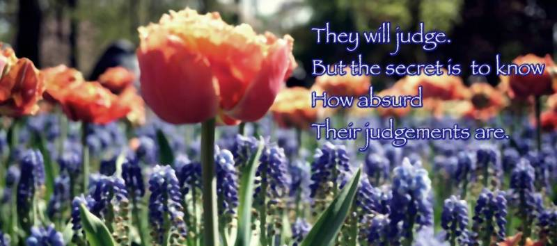 A photo of blue hyacinths and red tulips with the quote, They will judge but the secret is to know how absurd their judgments are.
