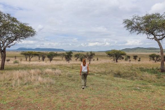 Tanzania, Serengeti (62)