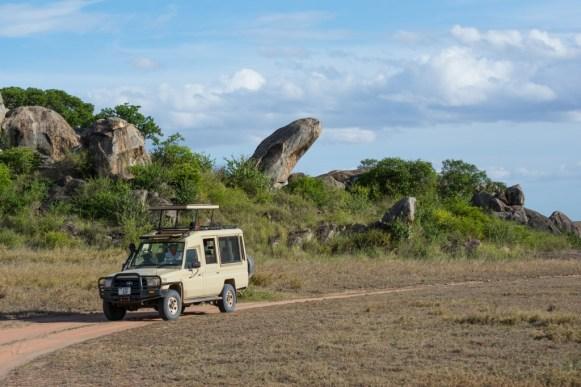 Tanzania, Serengeti (8)