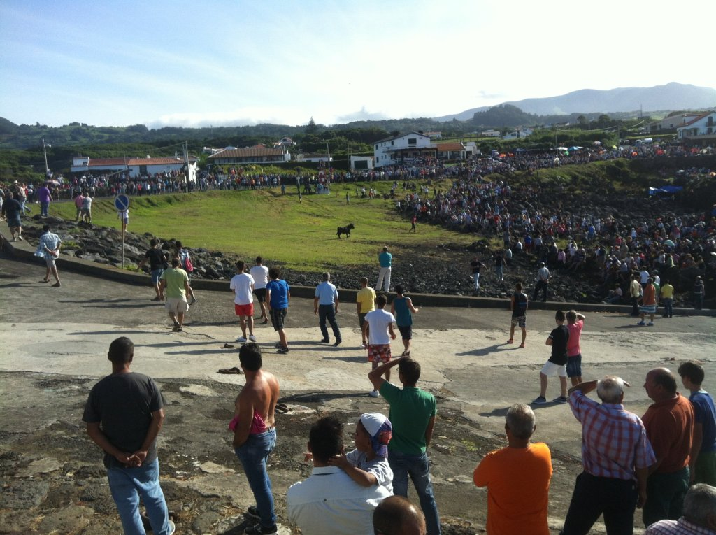 A crowd gathers around an Azorean bullfight on Terceira Island.