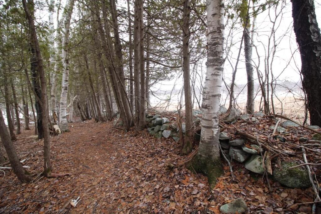 A hiking trail on the Central Penjajawoc Preserve in Bangor, Maine.