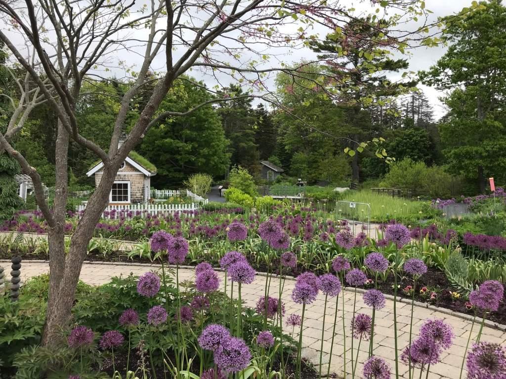 Coastal Maine Botanical Gardens - a beautiful public garden in Maine.
