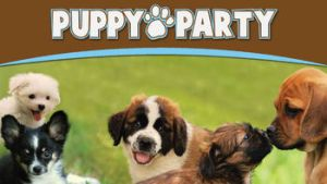 Learning with Puppy Party on Netflix