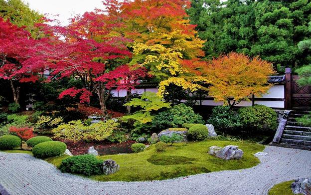Киото ботанический сад японский сад пагода