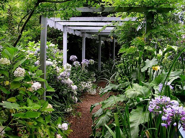 Сад Foxglove Spires в Австралии