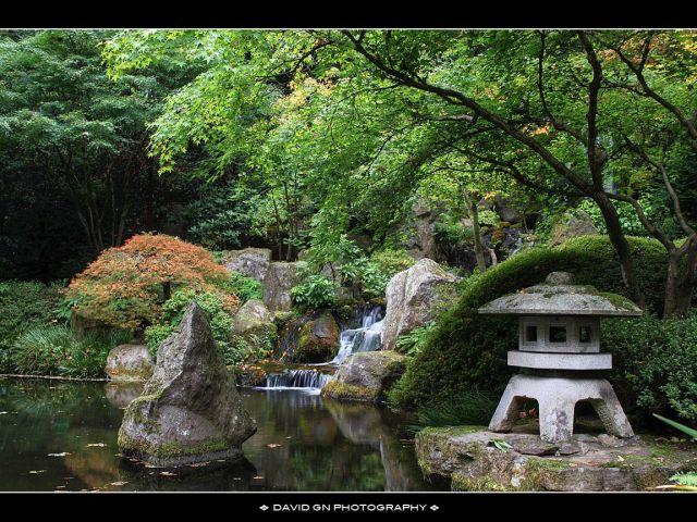большие фото природы бесплатно осенний японский сад