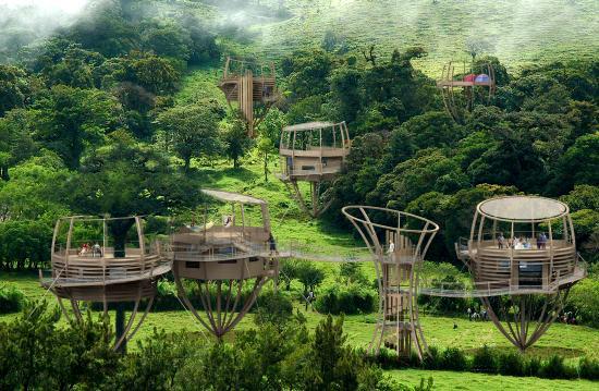 экодома в лесу