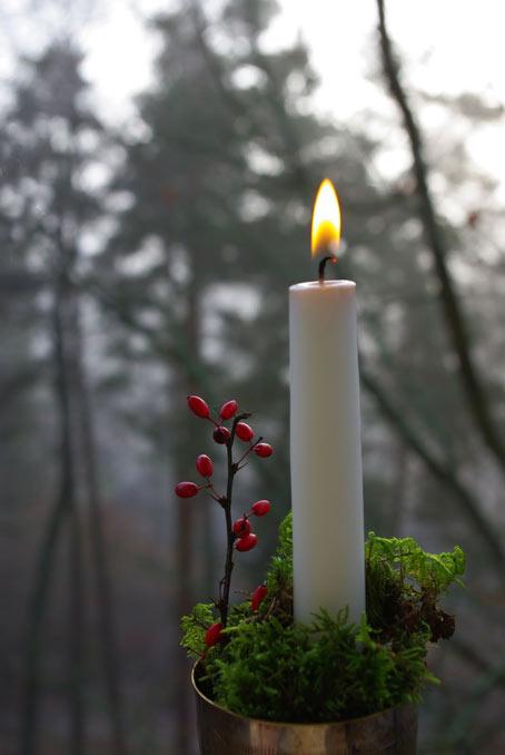 свеча ноябрьский лес
