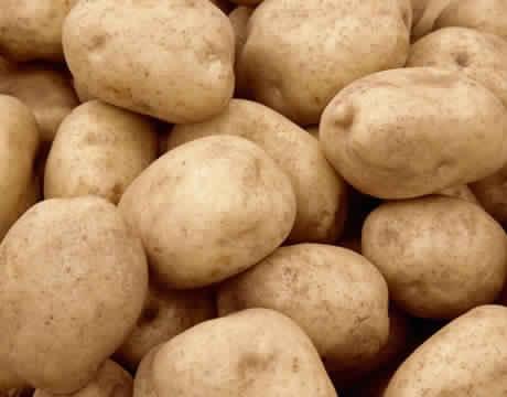 Как проращивать яровизировать картофель