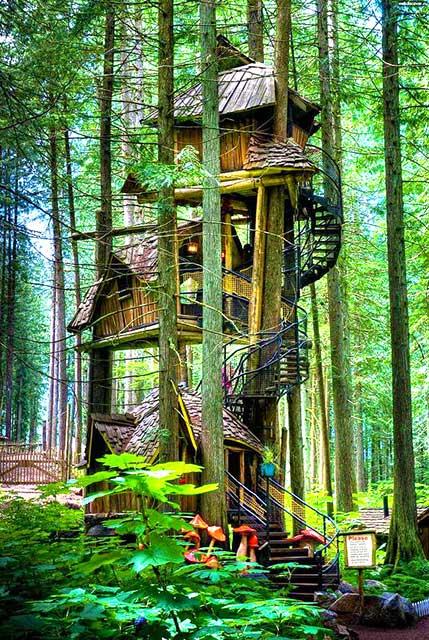Многоярусный дом на дереве