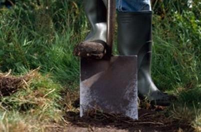Как перекопать целину на огороде