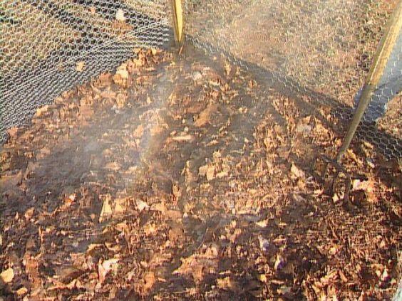 Компост из опавшей листвы