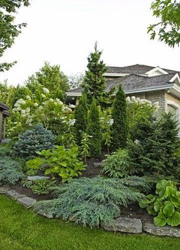 Вечнозеленый многолетний альпинарий на даче