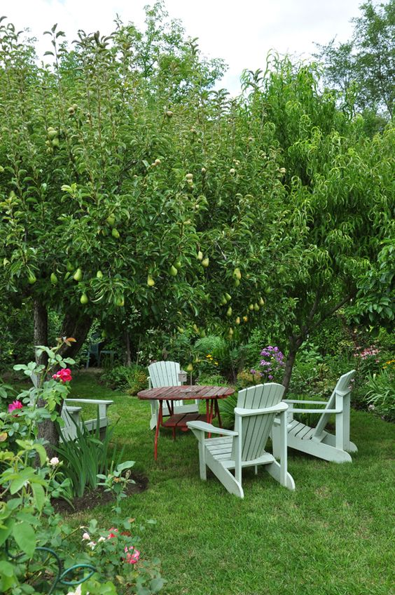 Место отдыха в саду под грушами