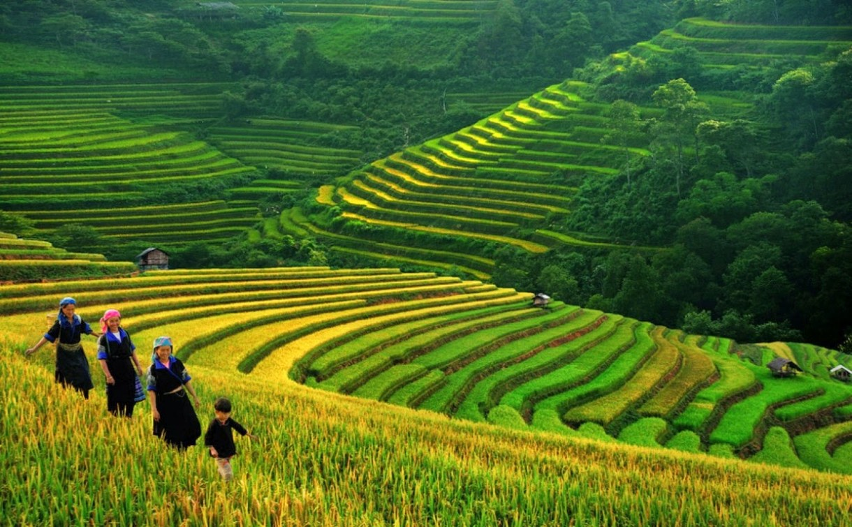 things-to-do-in-sapa-3062