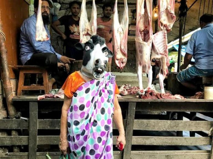 , The sacred cow and the depreciation of the … woman