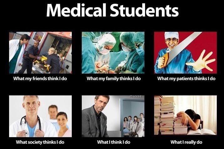 The Best Lifeofamedstudent Memes Of All Time Lifeofamedstudent