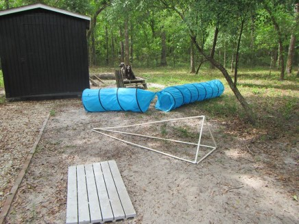 The agility course and our equipment shed