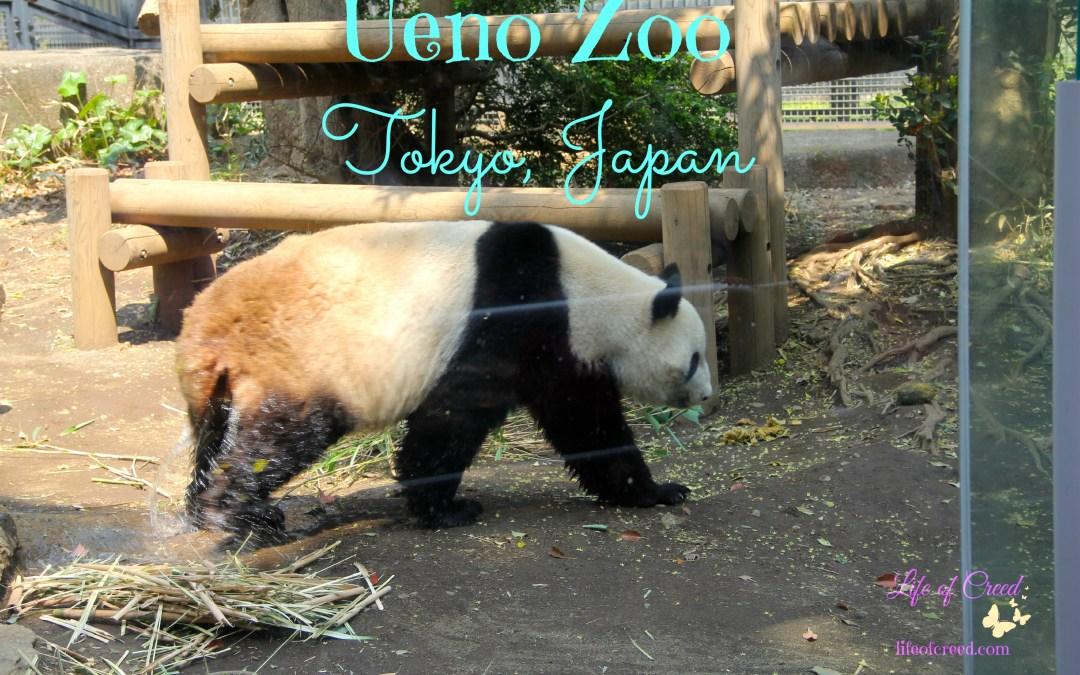 Ueno Zoo | Tokyo, Japan