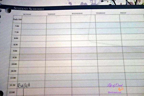 A well planned day family homeschool planner, record keeping