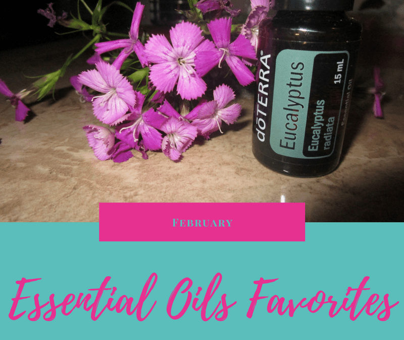 Eucalyptus Essential Oil | February Favorite