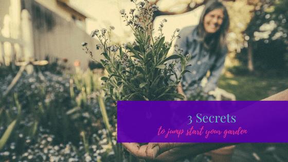 3 Secrets to Jump Start Your Garden