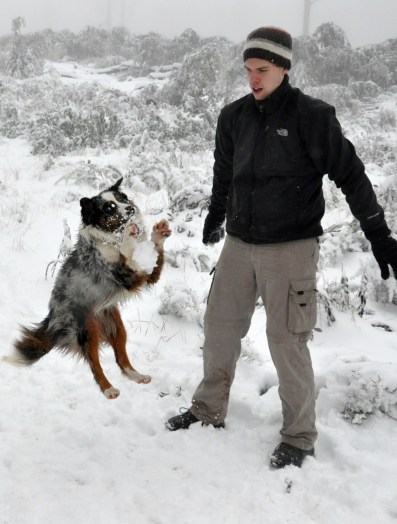Snowball catching!