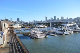 Pier 39 Harbour