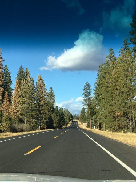 Driving to Yosemite