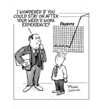Work Expeience