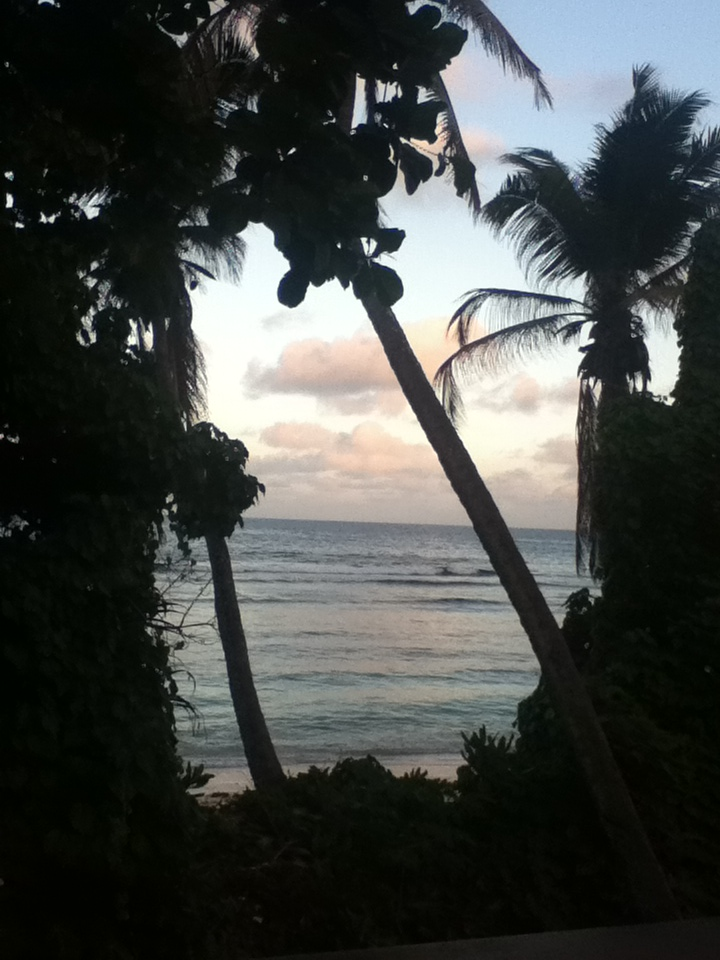 life-of-shal-exploring-the-seychelles-9