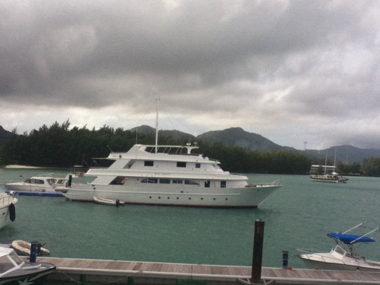 life-of-shal-the-seychelles-16
