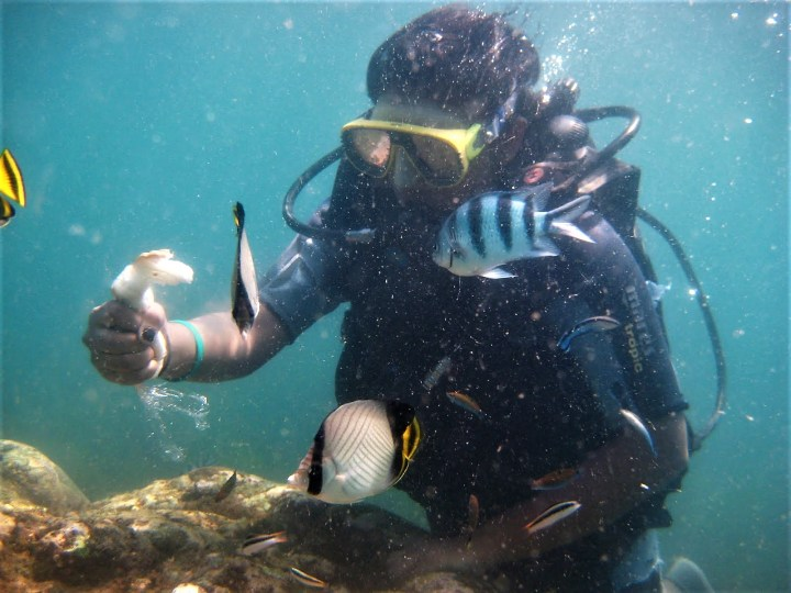 10 Simple Scuba Diving Tips for Beginners