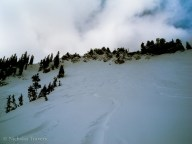 scotty's ridge! we dropped into some wicked chutes and laid our tracks