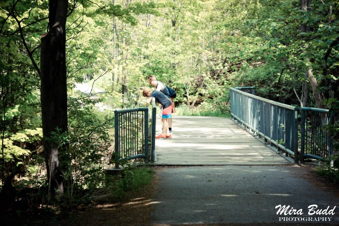 Cliffview Waterfalls Hamilton, Hamilton Waterfalls, Waterfalls in Hamilton, Ontario Hiking Trails,